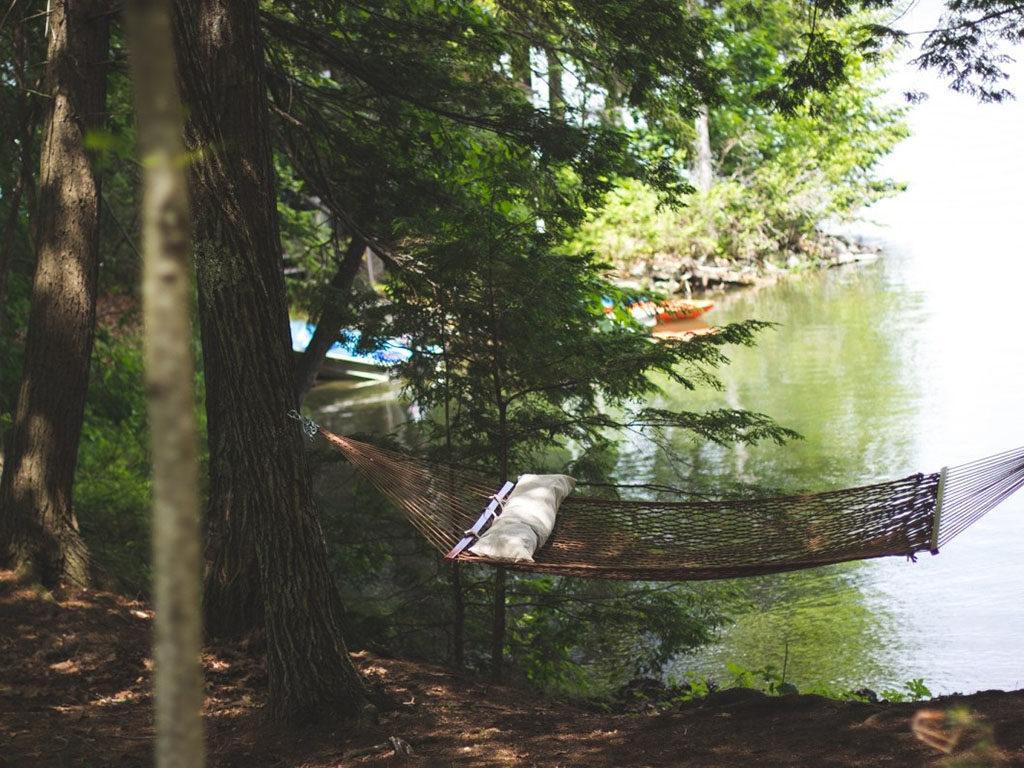 hamacas con almohada para árboles en jardín o campo