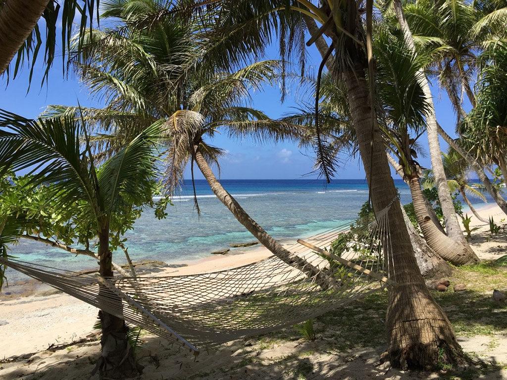 hamaca en playa tropical