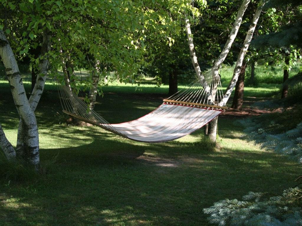 hamacas para árboles en jardín o campo 13