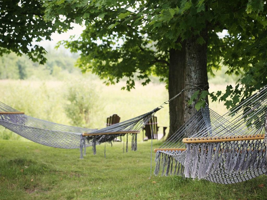hamacas para árboles en jardín o campo 2